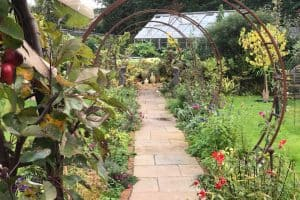 Cathie's Gardening School | https://cathiesgardeningschool.co.uk
