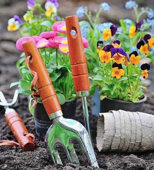 diggin | Cathie's Gardening School
