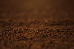 Soil close up